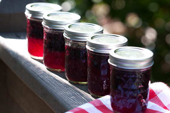 Blackberry-Freezer-Jam-1-of-1